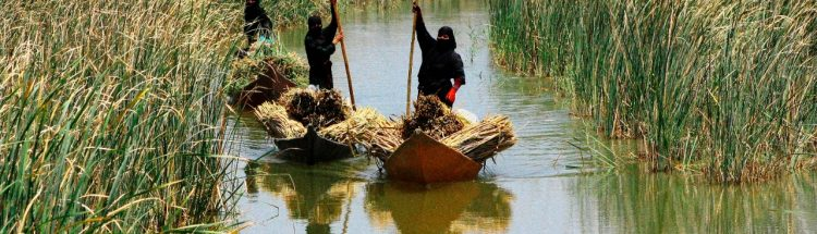 Three women on traditional boats in what could be a river in the Marshlands of Iraq
